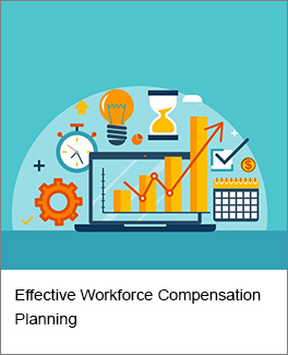 Effective Workforce Compensation Planning