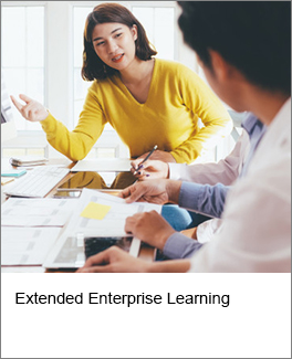 Extended Enterprise Learning