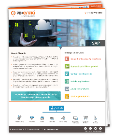 InfoSheet 3_Sap(staffing)_Landing page and email Image Sap_.png